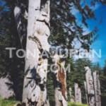 Totems at SGaang Gwaii, Haida Gwaii, BC