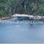 Shoreline, Haida Gwaii, BC