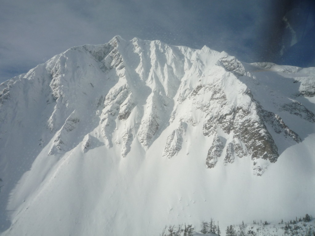 Avalanche zone near Birkenhead River, BC